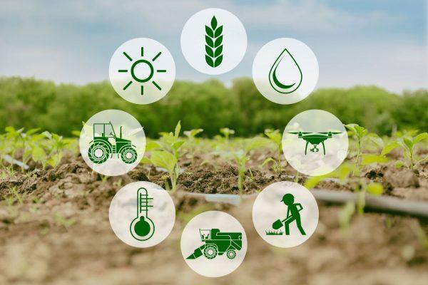 FARM TO FORK: È INIZIATA LA RIVOLUZIONE AGROALIMENTARE